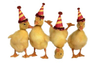 DuckParty
